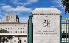 圖為世界貿易組織總部。(圖源:互聯網)