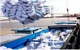 圖為大米出口裝船。(示意圖源:互聯網)