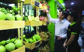 消費者選購達VietGAP標準的水果。(圖源:互聯網)