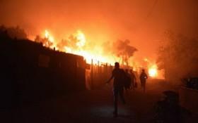 當地時間9月9日,希臘萊斯博斯島的莫里亞難民營發生大火後,難民離開著火地。(圖源:AP)