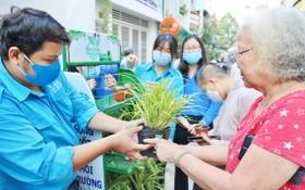 第三郡青聯會會員向民眾贈送盆栽。(圖源:越通社)