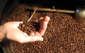 農業與農村發展部:歐盟是越南咖啡的最大銷售市場,佔全國總產量的40%和出口總值的38%。(示意圖源:互聯網)
