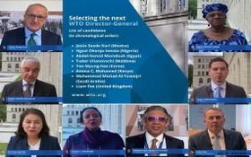 8名世貿總幹事候選人。(圖源:互聯網)