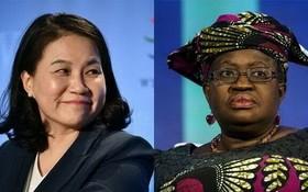 由於第三輪磋商的兩名候選人都是女性,世貿組織成立25年來將首次迎來女總幹事。(圖源:互聯網)