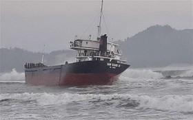 """觸礁擱淺的""""南慶號""""貨船。"""