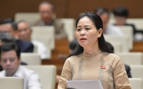 太平省國會代表阮氏秋蓉在討論會上發言。(圖源:國陳)