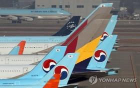11月16日,大韓航空和韓亞航空客機停放在仁川國際機場。(圖源:韓聯社)