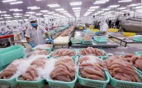 圖為查魚片加工生產車間一瞥。(圖源:越通社)