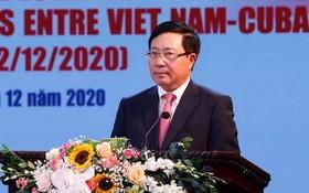 政府副總理、外交部長范平明在集會上致詞。(圖源:VGP)