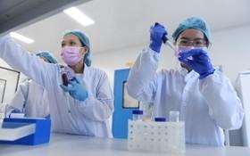 Nanogen 公司在研發新冠疫苗。(圖源:TTO)