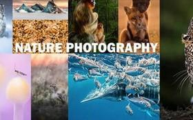 年度自然攝影大獎揭曉,重現侏羅紀世界