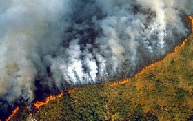 2020年,巴西亞馬遜地區發生10萬3000多起火災,比上一年增加近16%。(圖源:互聯網)