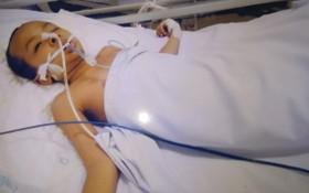趙何順小弟弟左腦嚴重震傷。