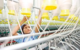 各國際組織對越南經濟充滿希望。