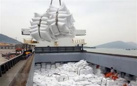 圖為大米出口裝船。(圖源:耀基)