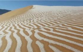 撒哈拉沙漠出現被白雪覆蓋的罕見美景。(圖源:互聯網)