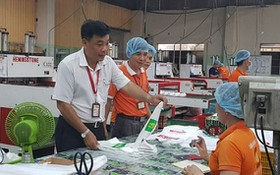 南泰山公司黨支部書記阮梅雄(左)與同事們討論產品質量。