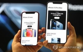 Iphone12系列。(圖源:互聯網)