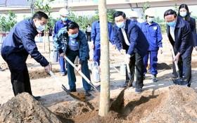 河內市和資源與環境部領導參加植樹活動。(圖源:K.T)