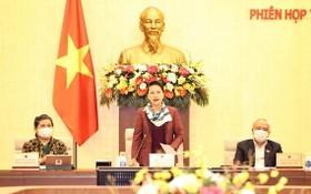 國會主席阮氏金銀(中)主持會議。(圖源:越通社)