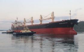 OCEAN AMAZING號貨輪。(示意圖源:互聯網)