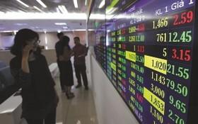投資者在關注市證券交易所的實時股票行情電子板。(圖源:T.L)