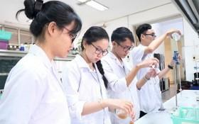 """市醫藥大學的學生組成功進行""""用嫩柚子製減肥消脂膠囊丸研究""""項目。"""