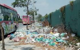 平政縣平興鄉范雄街延長路段成為若干意識差的人亂丟垃圾之地。