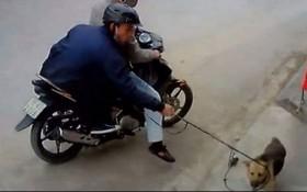 兩名偷狗賊被監控拍下偷狗全過程。