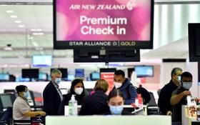 在悉尼國際機場,大批乘客等候辦理登機手續。(圖源:AFP)