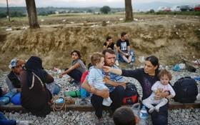 非法入境希臘的移民。(圖源:互聯網)
