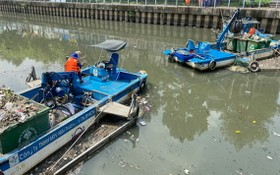 市都市環境一成員有限責任公司的工人在饒祿-氏藝涌打撈死魚。