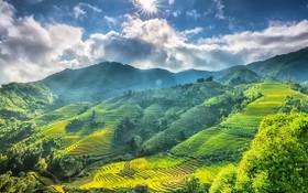 德國媒體介紹越南特色旅遊景點