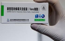 世衛組織建議將中國國藥新冠疫苗用於18歲及以上成年人。(圖源:視覺中國)