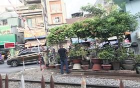 某人在鐵路安全走廊種植盆景。