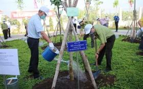 市領導參加植樹活動。