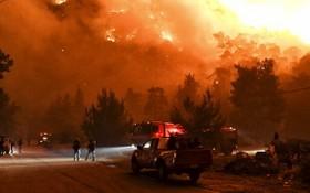 希臘科林斯山火現場。(圖源:AP)