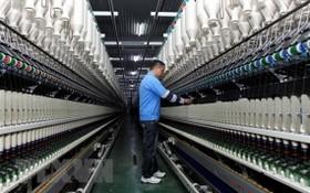 一名工人在一家紗線車間操控生產線。(圖源:越通社)