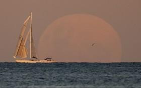 超級血月:圖為5月26日,月亮從澳大利亞悉尼遠處海邊漸漸升起。(圖源:AP)