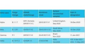 世衛改用希臘字母命名變異新冠病毒。(圖源:互聯網)