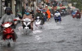 上月底出現的全天降雨導致守德市多條街道受淹。