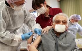 醫務人員為一名老人接種新冠疫苗。(圖源:越通社)
