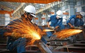 製造、加工業同比維持增長。(圖源:UEF)