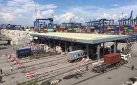 集裝箱車穿梭桔萊港碼頭。(圖源:秋紅)