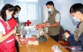 2020年8月,朝鮮紅十字會工作人員準備開展消毒等防疫工作。 (圖源:韓聯社/朝中社)