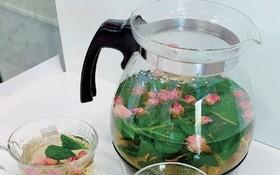 薄荷、紫蘇葉香氣獨特   防疫在家喝「花草茶」舒心又養生