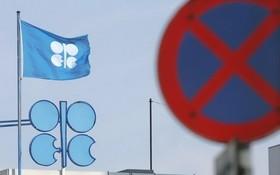 位於奧地利首都維也納的石油輸出國組織總部一角。(圖源:互聯網)