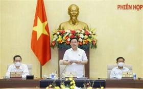 國會主席王廷惠(中)在會議上發言。(圖源:越通社)