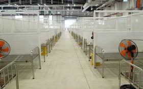 平陽省增設規模達1500張床的野戰醫院。(圖源:VnE)