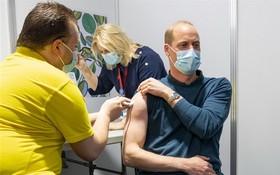圖為英國威廉王子5月20日在官方推特張貼他挽起袖子接種疫苗的照片。(圖源:推特)
